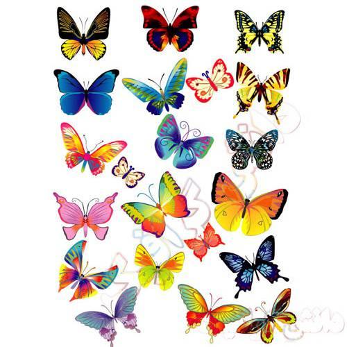 وکتور پروانه های رنگی ai
