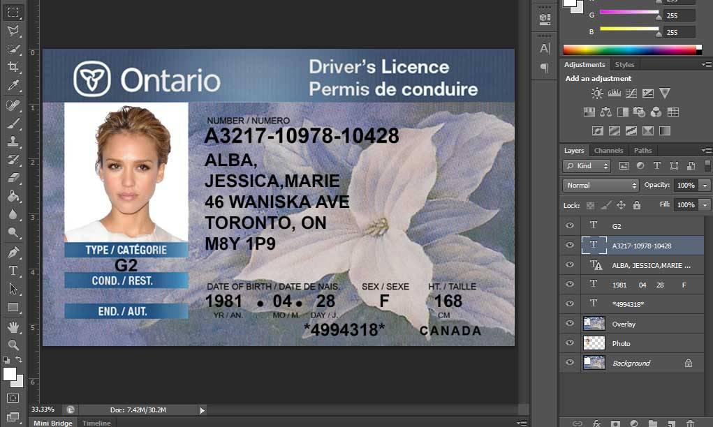 دانلود مجموعه گواهینامه های رانندگی کانادا