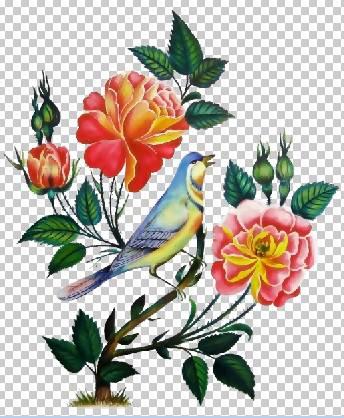 مجموعه لایه باز گل و مرغ