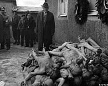 مقاله نسل کشی چیست؟