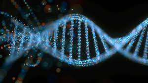 تحقیق محاسبه مبتني بر DNA