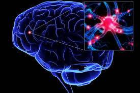 تحقیق حمله به مركز فرماندهي مغز