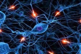 دانلود پاورپوینت الگوریتم فرا ابتکاری شبکه عصبی