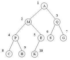 تحقیق ساختارهای درختی