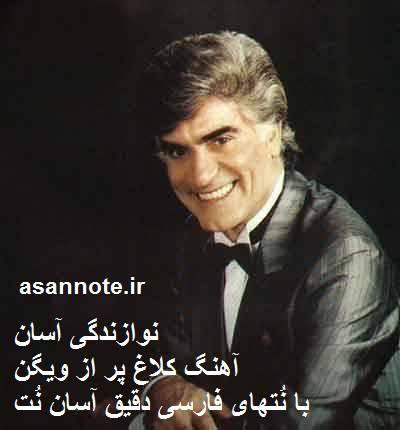 نُت فارسی کلاغ پر از ویگن
