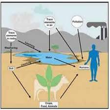 تحقیق زمین شناسی پزشکی