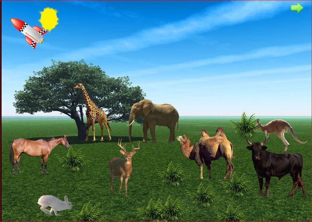 اموزش حیوانات 2