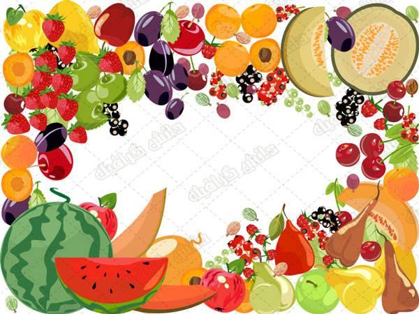 طرح وکتور انواع  میوه