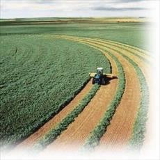 پاورپوینت درباره کشاورزی پایدار