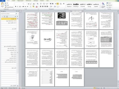 تحقیق دربارهاكولوژي برنجدارای 28 صفحه