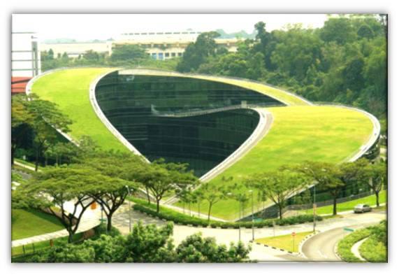 معماری ارگانیک بررسی مدرسه هنر سنگاپور