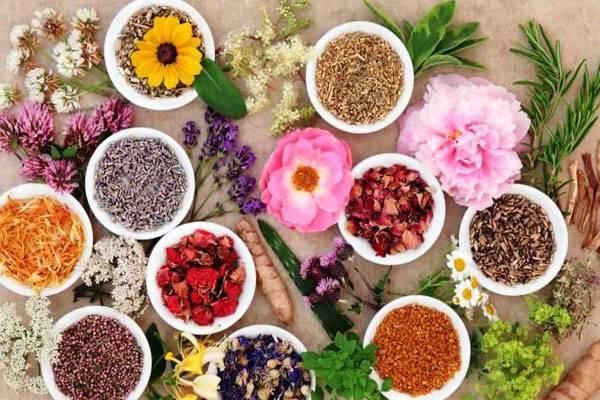 دانلود پاورپوینت آشنایی با بهترین و مهمترین گیاهان دارویی